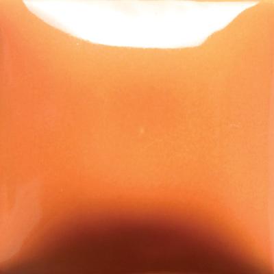 Pumpkin FN040