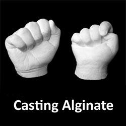 Casting Powder (Alginate) 900g bag CAST001