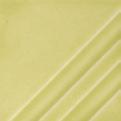 Celery FN227