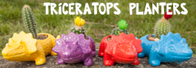 Triceratops planters